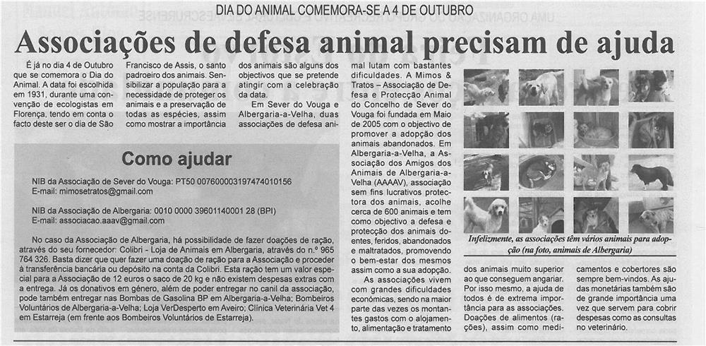 BV-1ªout12-p15-Associações de defesa animal precisam de ajuda.jpg