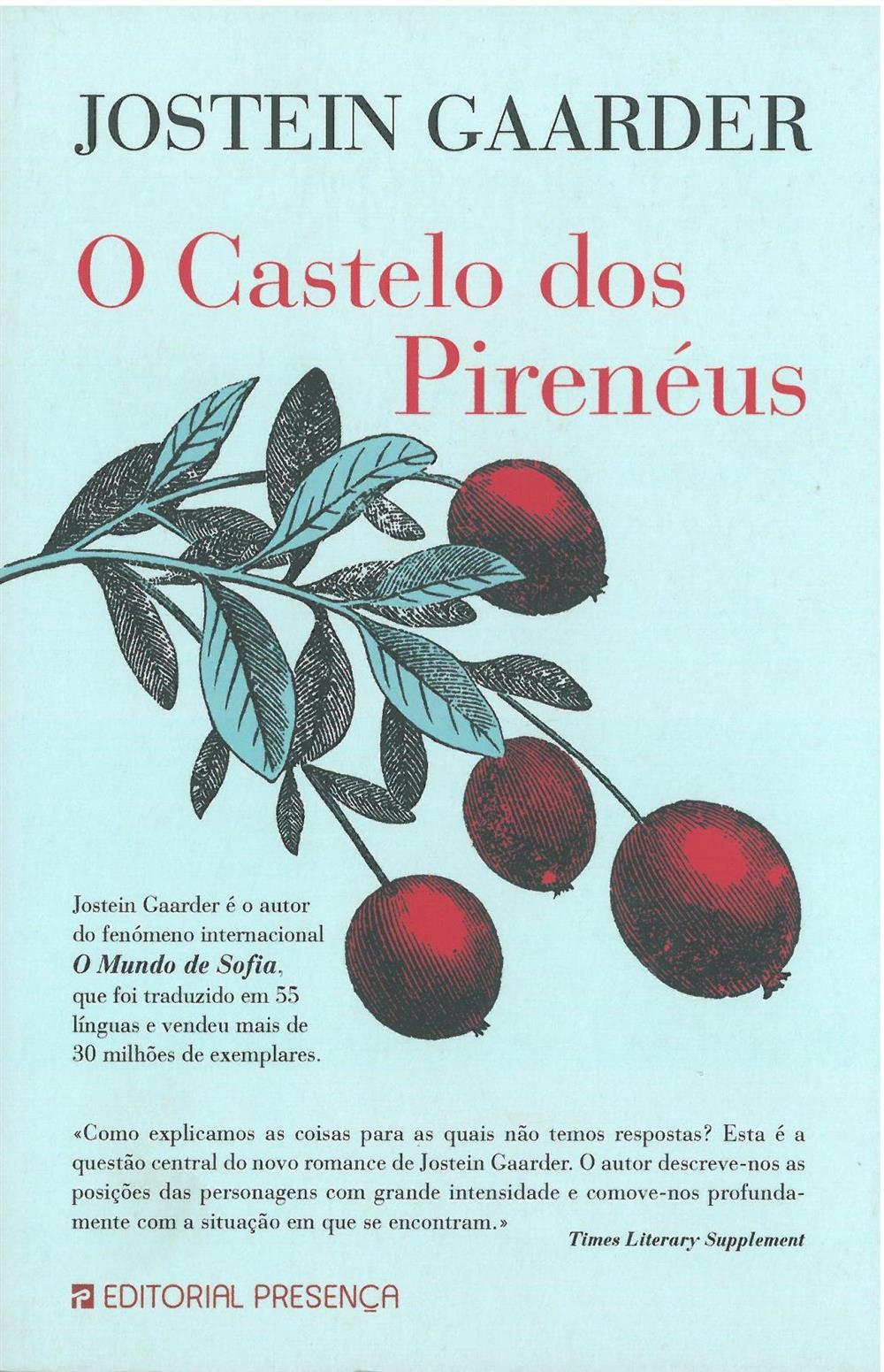 O castelo dos Pirenéus_.jpg