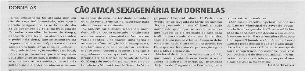 TV-fev13-p13-Cão ataca sexagenária em Dornelas