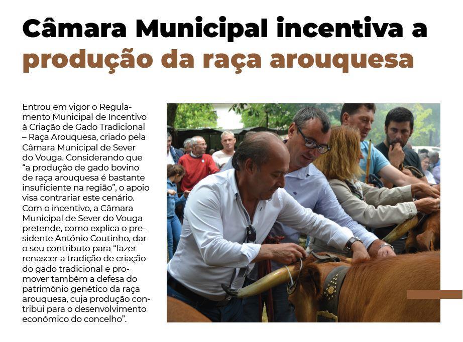 BoletimInfoSV-2.ºsem'19.-p.7-Câmara Municipal incentiva a produção da raça arouquesa.JPG