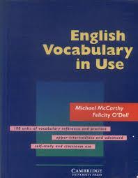 English vocabulary in use.jpg