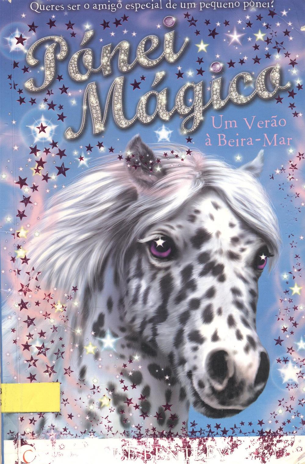 magico 001.jpg