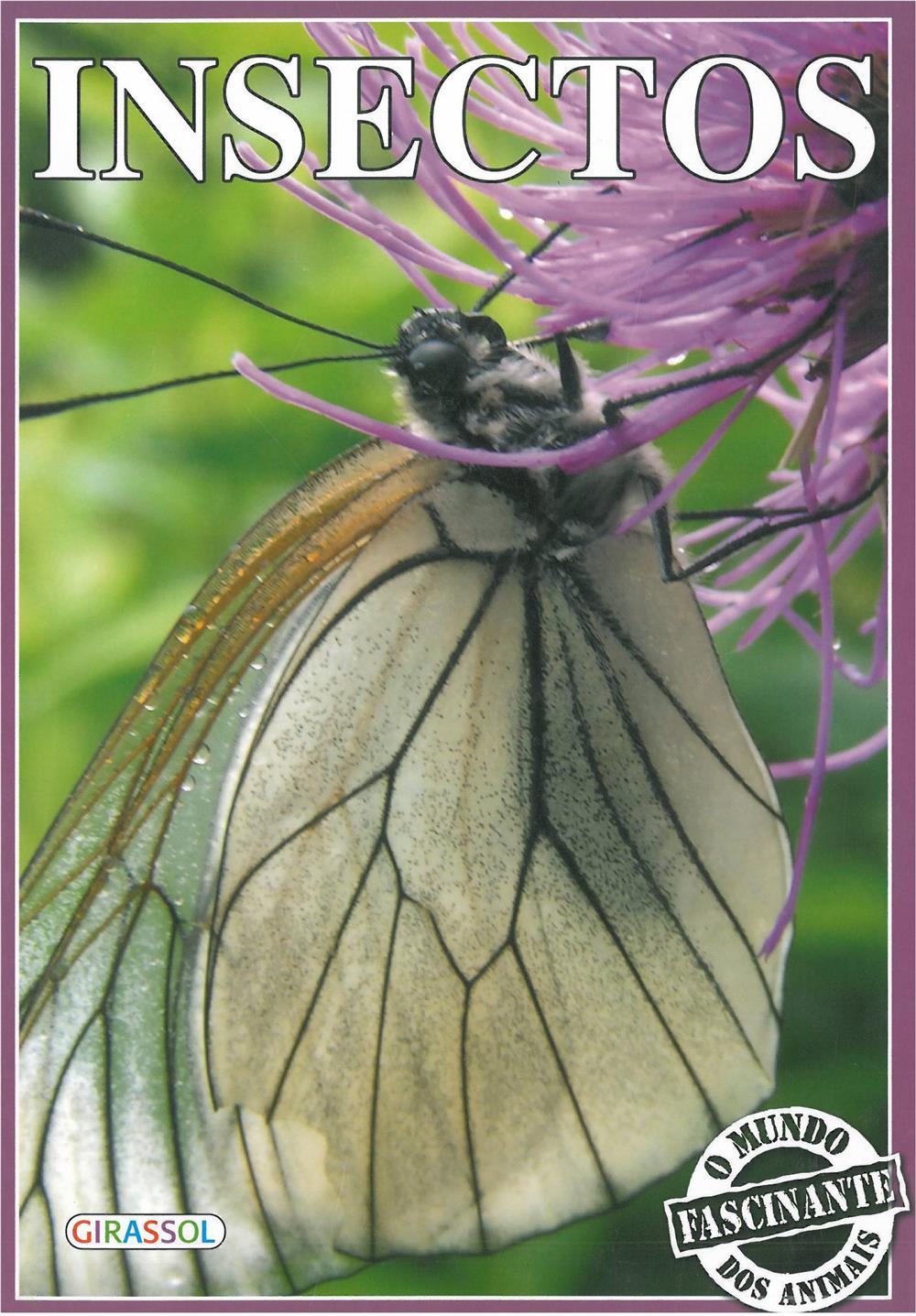 Insectos_Infantil.jpg