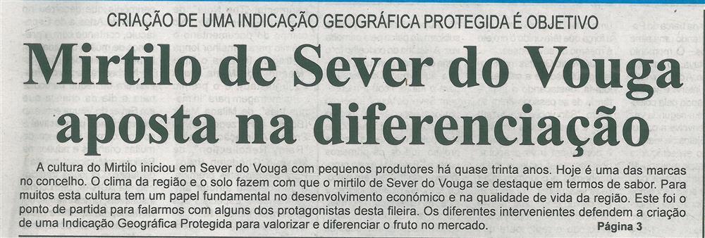 BV-1.ªjun.'19-p.1-Mirtilo de Sever do Vouga aposta na diferenciação : criação de uma indicação geográfica protegida é objetivo.jpg