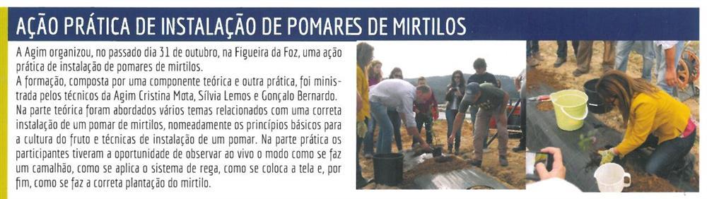 AgimInforma-jan.'15-p.5-Ação prática de instalação de pomares de mirtilos.JPG