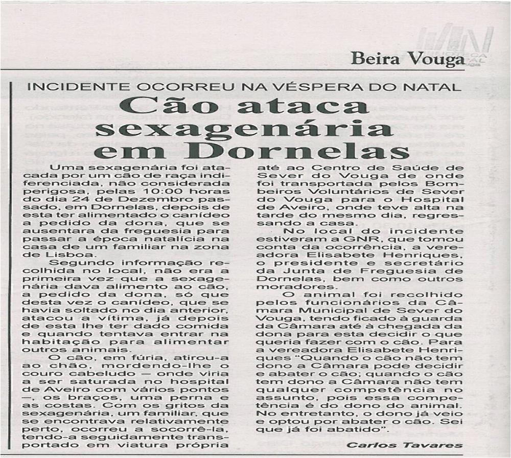 BV-2ªjan13-p16-Cão ataca sexagenária em Dornelas